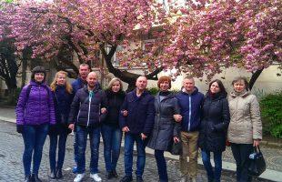 """Excursion """"Sakura and primroses in Transcarpathia"""" (2017)"""